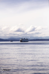Seattle, Orca Islands, Leavensworth, March 04-13, 2016 6091 (Sharleen Stuart) Tags: seattle city travel vacation usa mountains cold rain ferry skyline us washington ferriswheel citystreets pikestreetmarket bainsbridge
