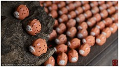 Votive offerings, Kyoto (Damien Douxchamps) Tags: temple kyoto   hog kansai   kinki higashiyama       keninji marishisontendo