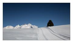Blanc et bleu (Rmi Marchand) Tags: montagne canon de mark plateau iii 5d paysage col beauregard hautesavoie croixfry
