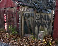 Sail Away (geowelch) Tags: toronto parkdale urbanlandscape urbanfragments olympusomdem5 panasoniclumixvario1445mm