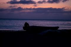 Otro atardecer (Races annimas) Tags: costa arbol atardecer mar colombia pescador caribe pescar pelcano islafuerte arbolquecamina