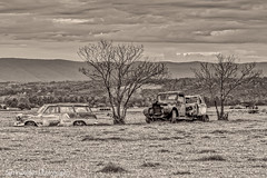 Rusting Away (darrinwalden Photography) Tags: old cars car rural truck rust farm ruralfarmcounrtyaustraliacarchimney