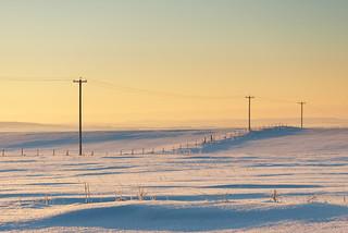 Sunny winter morning.