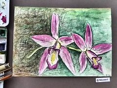 Flowers (marusaart) Tags: flowers flower art watercolor painting artist mixedmedia blumen watercolour blume aquarel schmincke marusaart
