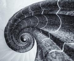 Up (katrin glaesmann) Tags: stairs leipzig spiralstairs wendeltreppe knigshauspassage
