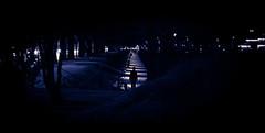 The catwalk of Copenhagen nights