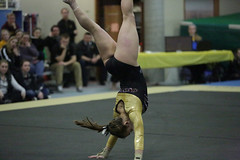 4A4A6816 (Gustavus Athletics) Tags: gymnastics