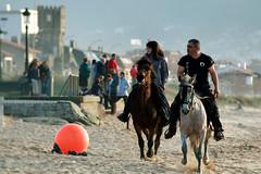 Beach (andreaalonso96) Tags: horses horse beach nature animal animals spain sand galicia nigrn