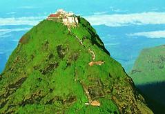 central highlands Sri-Lanka_101022 (Mob/WhatsApp:00919495509009) Tags: شاي استواء جبل وحش غابة أسد سياحة سري آسيا سيرلانكا مرتفعة مطيرة اعجوبة