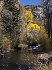 along the creek (Explored) (Jeff Mitton) Tags: mountains creek landscape spires cliffs blackcanyonofthegunnison wondersofnature westernlandscape westelkmountains curecanticreek earthnaturelife