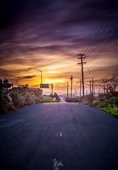 Capturing the Sunset (Rohit KC Photography) Tags: california ca sunset sun yellow canon evening dusk magenta milpitas canon24105mmf4l canon5dmarkii