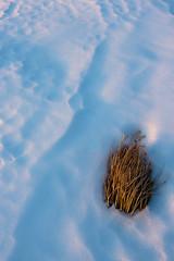 ventassso (cucjanji) Tags: sunset ice fire minimal minimalismo forme ghiaccio linee ventasso