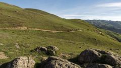 They Went East (LeftCoastKenny) Tags: grass fence rocks hills boulders hikers sierravistatrail sierravistaopenspacepreserve