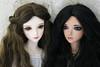 Iplehouse Cordelias (twinkle_moon_bunny) Tags: dolls bjd cordelia msd jid baljoint iplehouse