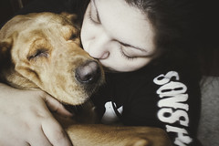 43/365 (KatrinaMariexox) Tags: portrait dog pets love animals female self canon photography personal memories lifestyle babygirl labradorretriever forever 365 sweetheart paws simple bestfriend matte furbaby mygirl homelife photooftheday redfoxlab puppycuddles t1i