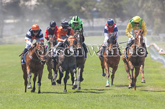 Smile of the Finish Line (Jason Whittle Photography) Tags: horses race track running finish horseracing sa southaustralia result portlincoln eyrepeninsula
