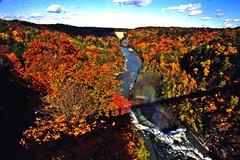 Letchworth State Park (Dave Redman pics) Tags: statepark fallcolor waterfalls letchworth letchworthstatepark perry geneseeriver westernnewyork castile mountmorris