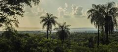 Desde el Cerro Ver, lluvia sobre Piray (Rolo Egusquiza) Tags: naturaleza arboles paisaje cerro paraguay rolando turismo caacup senatur piray egusquiza cerrovera