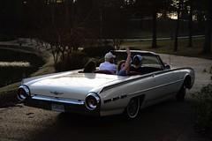 1962 Thunderbird Sunday Drive (wetenz) Tags: cars ford mississippi grandkids fords vintagecars americancars sundaydrive familytime watervalley fordthunderbird fordmotorcompany fordtbird yalobushacounty watervalleymississippi 1962ford nikond800 sundaydrivin 1962fordthunderbird vintageconvertibles 1962tbirdconvertible