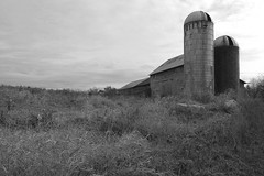 Barn and Silos (New Paltz Camera Company) Tags: new york white ny black monochrome barn d50 river nikon bob silo valley silos hudson esposito paltz