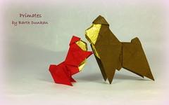 Primates by Barth Dunkan (Thomas Krapf Origami) Tags: paper origami magic ape primate dunkan paperfolding barth affe fingaz papierfalten barthdunkan