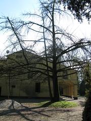 2008 03 Emilia Romagna - Parma - Sant'Agata - Casa Verdi - Il Parco_291 (Kapo Konga) Tags: italia emiliaromagna santagata