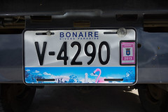 """Bonaire2 • <a style=""""font-size:0.8em;"""" href=""""http://www.flickr.com/photos/91306238@N04/25796263881/"""" target=""""_blank"""">View on Flickr</a>"""