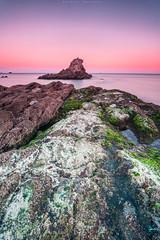 El camino acaba aqu (sergio estevez) Tags: naturaleza color luz marina landscape atardecer mar agua nikon playa paisaje cielo calma rocas algeciras largaexposicin estrechodegibraltar campodegibraltar getares sergioestevez