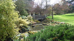 Japanese bridge at Mount Ephraim Gardens (tedesco57) Tags: lake fountain gardens garden japanese topiary mount maze bulbs haha ephraim miz cedars