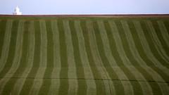Westcliffe (Jelltex) Tags: field grass hay westcliffe jelltex jelltecks