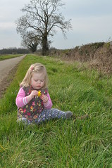 Dandylion (N'GOMAPHOTOGRAPHY) Tags: countryside walk lincolnshire fields northborough marketdeeping daddydaughtertime etton