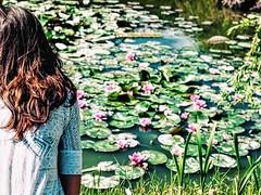 (jankaboo) Tags: nature waterlilies slovakia meditation feelinghappy