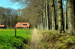 Dutch Landscape (JaapCom) Tags: trees tree netherlands farmhouse landscape natural natuur landschaft paysbas veluwe landschap naturel landgoed wezep ijsselvliedt farmhause jaapcom
