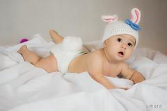 Minha coelhinha... !! >>> Ative sua mquina do tempo <<< #hardphotographia #kids #photography #photo #studio #coelhinha #sophie #girl #hard2016 #activateyourtimemachine #fotografia #babygirl #baby #saopaulocity #littlegirl #instakids #instababy #instalitt (Hard Photo) Tags: baby bunny girl kids studio easter happy photography photo sophie littlegirl fotografia pascoa babylove babybunny saopaulocity coelhinha instababy instakids hardphotographia babygirlsophierossi activateyourtimemachine instalittlegirl hard2016