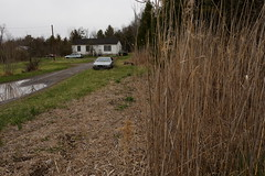 Shivertown Road (paul.comstock) Tags: house reflection cars home digital canon landscape puddle spring outdoor 28mm saturday april domicile mazda phragmites newpaltz digitalphotography 6d digitalphotograph 2016 shivertown shivertownroad wooedreed 9apr2016