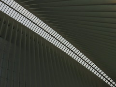 Oculus #2 (Keith Michael NYC (1 Million+ Views)) Tags: nyc newyorkcity ny newyork path manhattan worldtradecenter calatrava wtc oculus santiagocalatrava downtownnewyork downtownmanhattan transportationhub 1wtc oneworldtradecenter