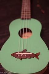 Day 162: New ukulele. Newkelele (allankcrain) Tags: ukulele dolphin instrument makaladolphin