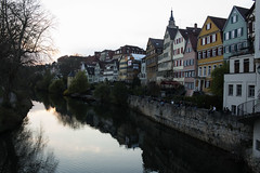 Spring has started (Trudie Schils) Tags: city houses wall photoaday tuebingen neckar project366 102366