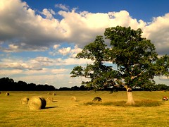 Jill Richardson - New Hay Day (Missouri Agriculture) Tags: clouds farm hay bales
