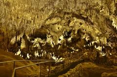 Carlsbad Fairyland (evanlochem) Tags: park new city america underground mexico hiking united trail national cave whites states carlsbad stalagmite caverns stalactite