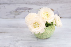 green bowl with ranunculus (photoart33) Tags: stilllife white ranunculus ranunculusstilllife