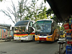 Yutong & Higer (Monkey D. Luffy 2) Tags: road city bus public photography photo coach nikon philippines transport vehicles e transportation coolpix vehicle society davao coaches philippine enthusiasts ecoland yutong higer philbes klq6119 zk6127h