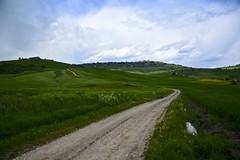 White road to Pienza, Val d'Orcia (Antonio Cinotti ) Tags: italy clouds landscape nikon italia nuvole unesco hills tuscany siena pienza toscana valdorcia paesaggio colline countryscape whiteroad campagnatoscana d7100 nikon1685 nikond7100