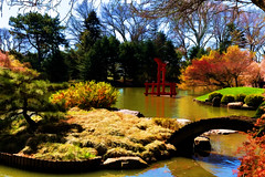 Japanese Hill-and-Pond Garden (Bob90901) Tags: newyorkcity canon garden japanese spring pond outdoor april brooklynbotanicgarden processed 6d hss 2016 canonef2470mmf28liiusm sliderssunday