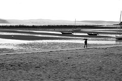 Along the sleepy ocean (pascalcolin1) Tags: ocean sea blackandwhite mer noiretblanc dune streetview capferret photoderue dunedupilat urbanarte photopascalcolin