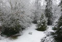 1er jour de neige (franfran37) Tags: arbres parc banc cdre