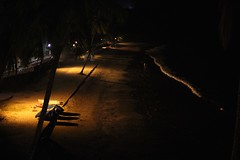 the beach at night (olive witch) Tags: trees sea india beach night outdoors december goa portfolio sodium dec15 galf 2015 abeerhoque litfest galf2015