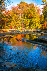 Sony A7RII Fine Art Autumn Landscapes Fall Colors Autumn Foilage! Dr. Elliot McGucken Fine Art Photography! (45SURF Hero's Odyssey Mythology Landscapes & Godde) Tags: autumn art fall nature colors photography landscapes fallcolors dr sony fineart fine wideangle autumncolors elliot foilage a7 fineartphotography naturephotography sonnar wideanglelens naturephotos fallfoilage tfe mcgucken fineartphotos a7r autumnfoilage fineartphotographer fineartnature sonya7 elliotmcgucken sonya7r elliotmcguckenphotography elliotmcguckenfineart sonya7rii a7rii a7r2 55mmf18zalens masterfineartphotography sonya7r2malibufineartlandscapessunsetssonya7riisony1635mmvariotessartfef4zaossemountlensdrelliotmcguckenfineartphotography drelliotmcguckenfineartphotographysonya7r2