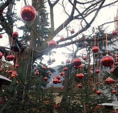 Kugelbaum (martini_bianca) Tags: italien italy weihnachten italia south palais palazzo natale alto italie tyrol südtirol bolzano bozen adige christkindlmarkt capofranco