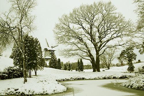 Winter day V